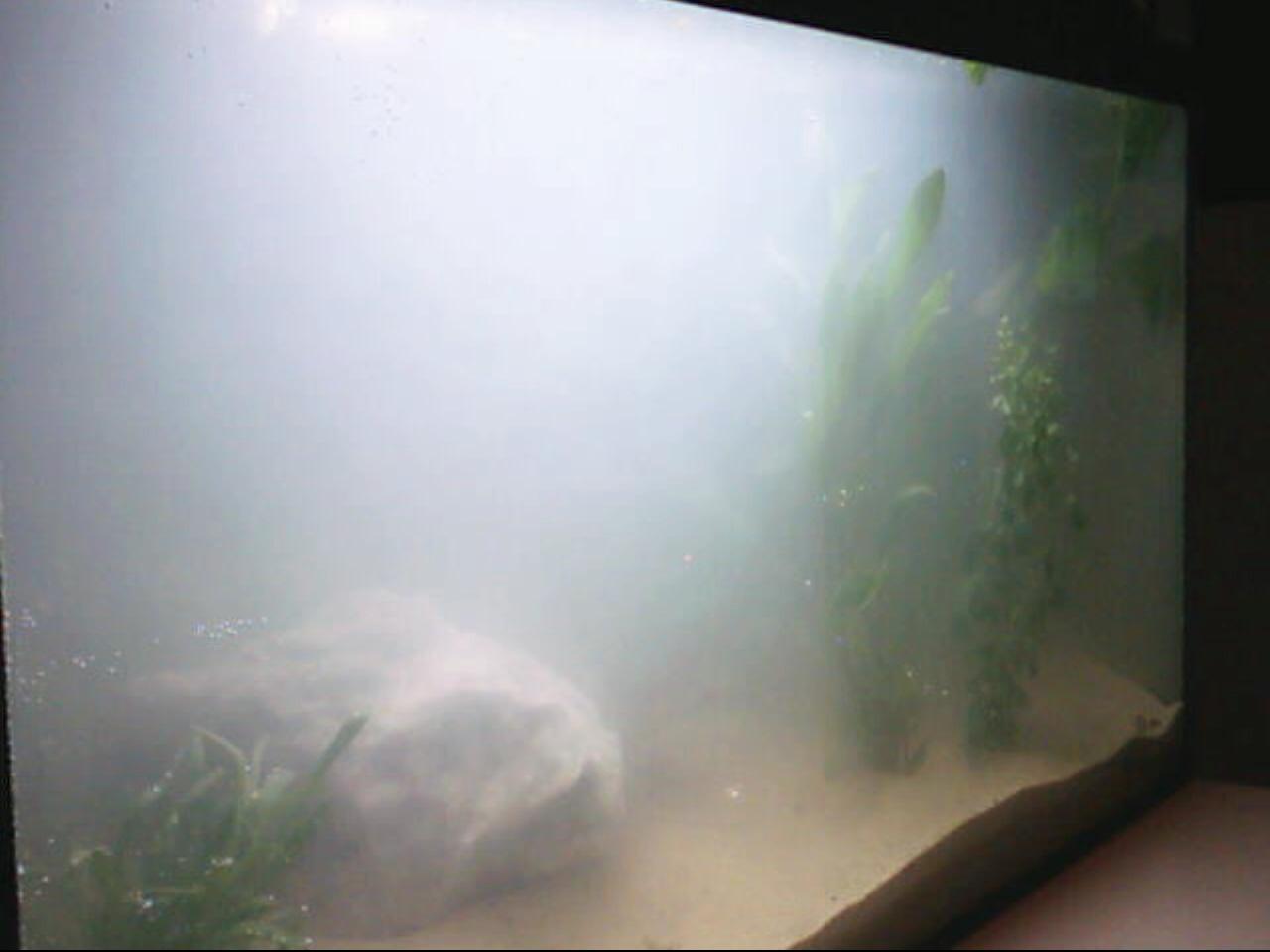 minder mist